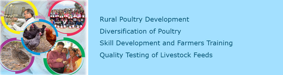 Central Poultry Development Organisation