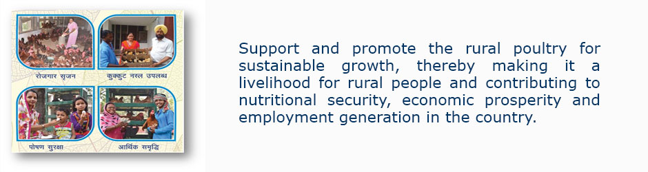 Central Poultry Development Organisation